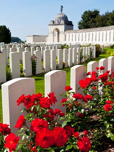 Poppies at Tyne Cot Cemetery