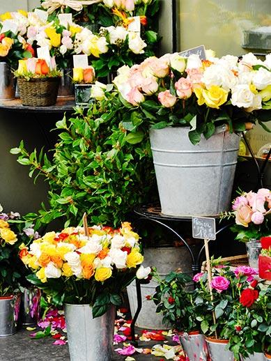 Flower stall at Ostend Market