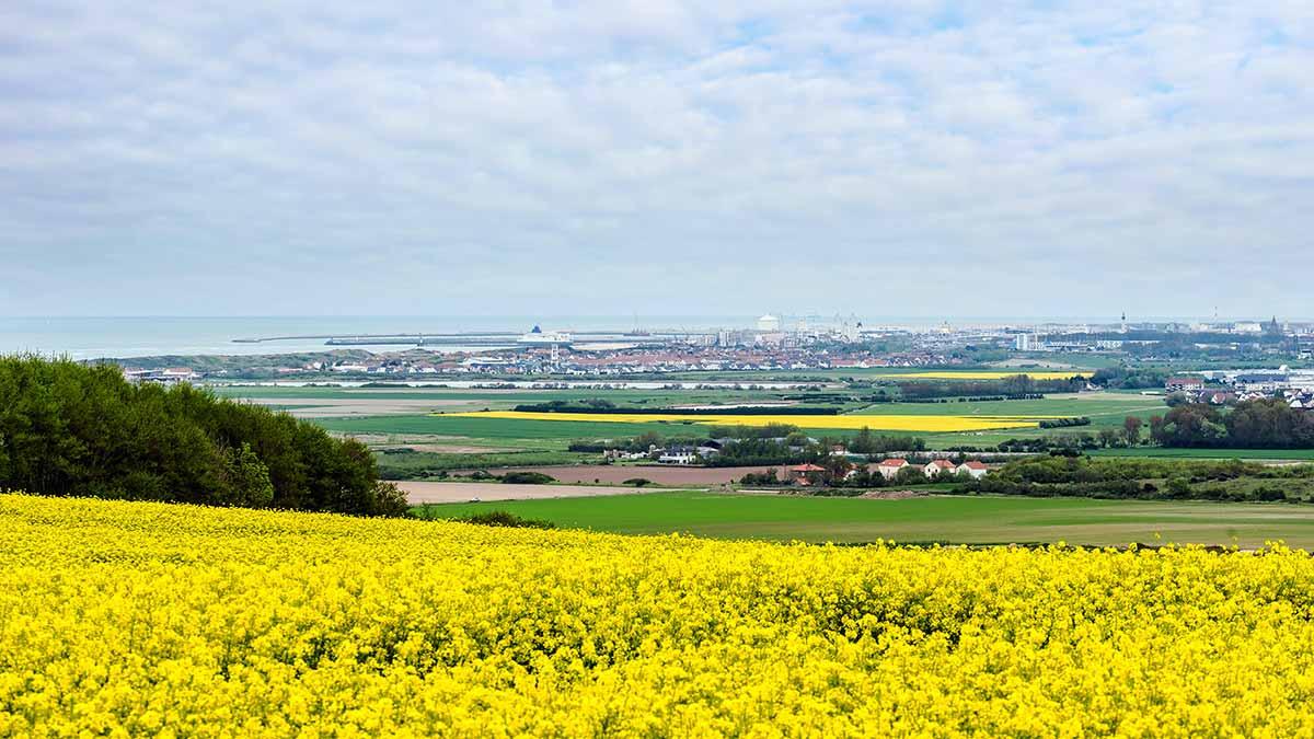 Calais Landscape