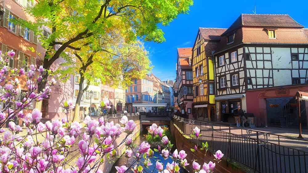 Flowers along a river in Colmar, France