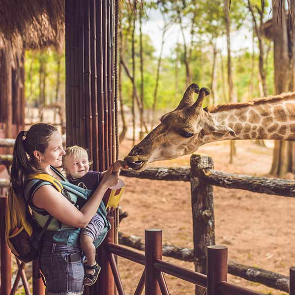 Mother and child with a Giraffe at a Zoo