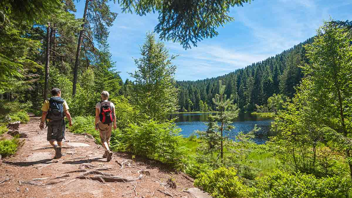 Hikers at Black Forest in Germany
