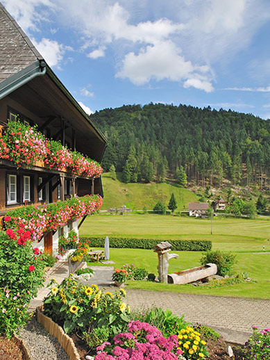 Idyllic Black Forest in Germany