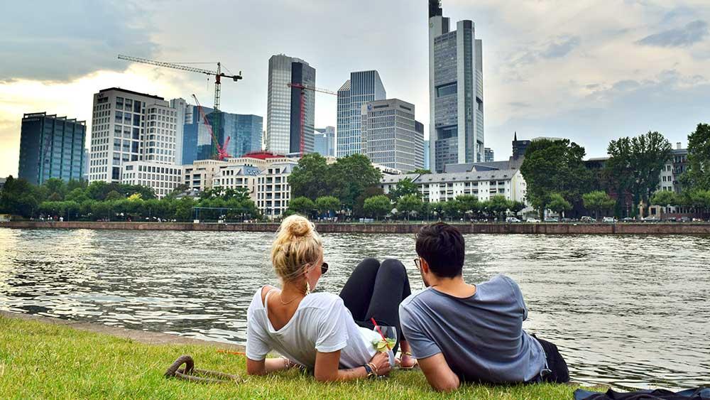 Summer in Frankfurt