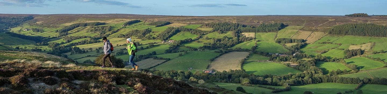 Que faire dans les North York Moors ?