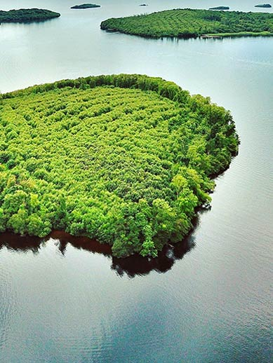 Les îles Lough en Irlande du Nord