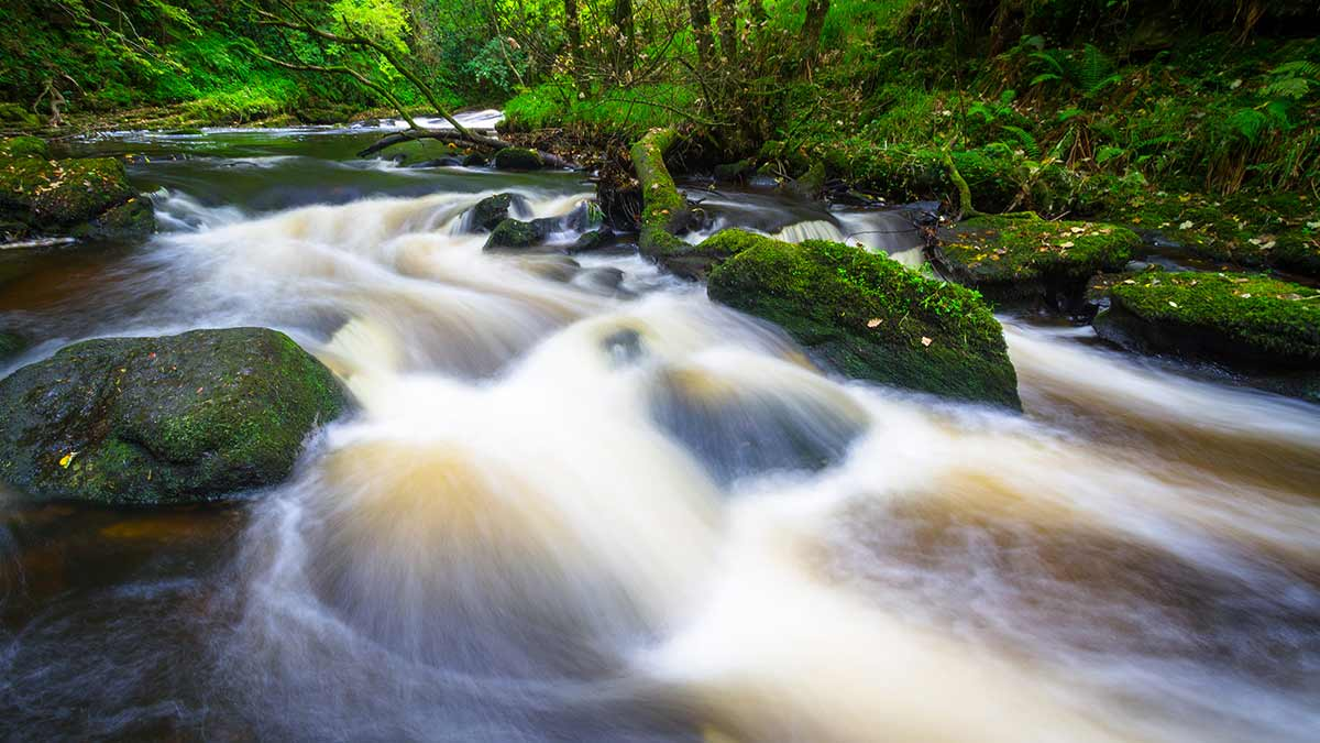 Clare Glens in County Limerick
