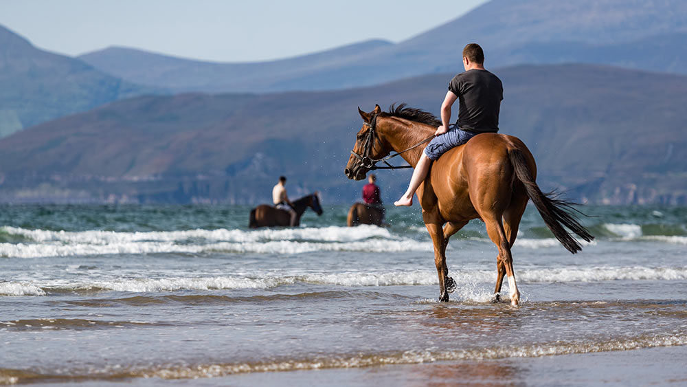 Horse riding in County Kerry