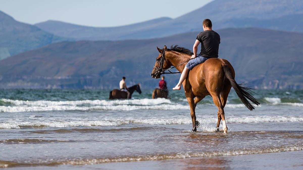 Horse riding in County Clare