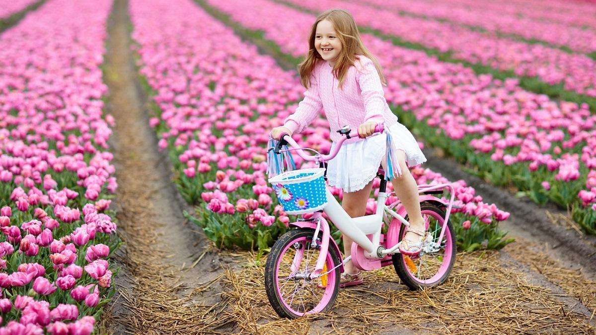 Taking a bike to Holland - tulip fields